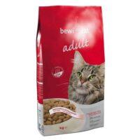غذای خشک گربه بوی کت