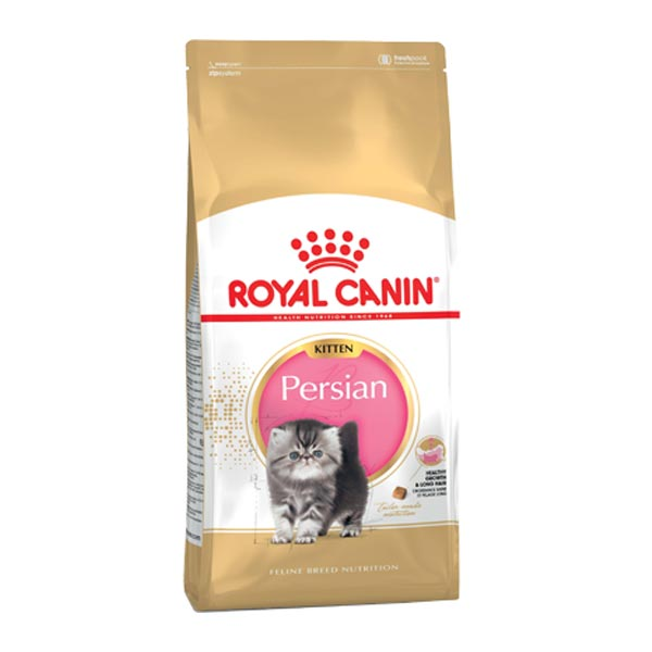 royalcanin kitten persian