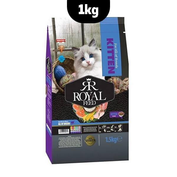 غذای خشک بچه گربه رویال فید