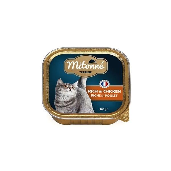 خوراک کاسه ای گربه میتونه با طعم مرغ