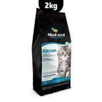 غذای خشک بچه گربه مفید
