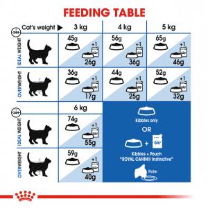 غذای خشک گربه ایندور