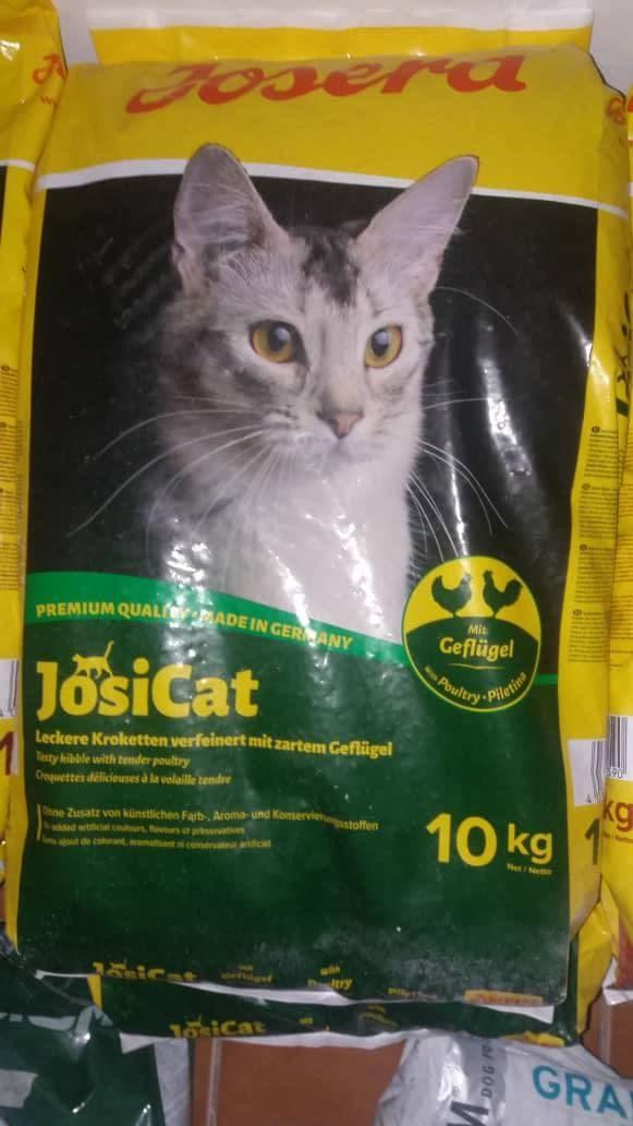 غذا خشک جوسرا گربه