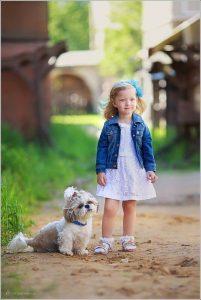 معرفی نژاد های برتر سگ
