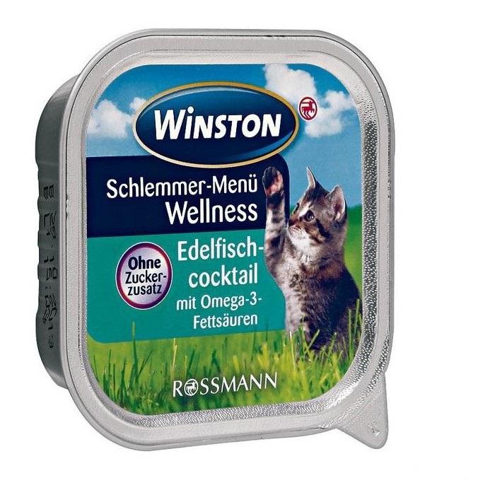 ووم گربه وینستن با طعم کوکتل ماهی