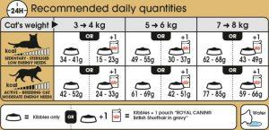غذای خشک گربه بالغ موکوتاه بریتانیایی