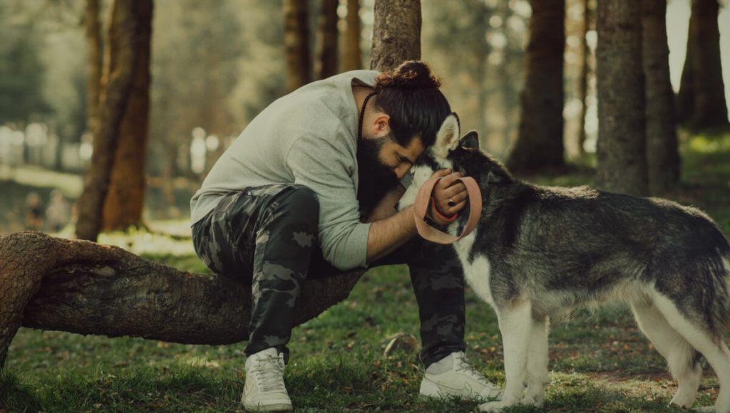 اگر این 15 نکته را نمیدانید سرپرستی یک سگ را نپذیرید!
