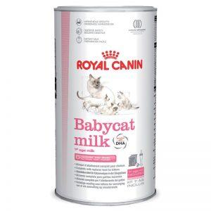 شیر خشک Babycat milk