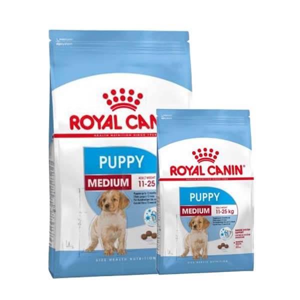 غذای خشک سگ مدیوم پاپی رویال کنین
