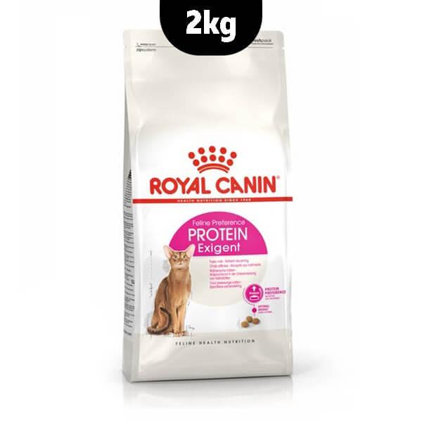 غذای خشک گربه Protein exigent رویال کنین
