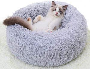 تخت خواب گربه