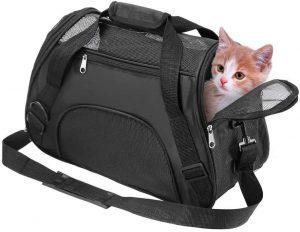 لیست جامع لوازم ضروری گربه خانگی