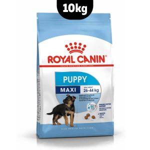 غذا خشک سگ maxi pupy رویال کنین