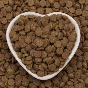 ویژگی های غذای خشک گربه