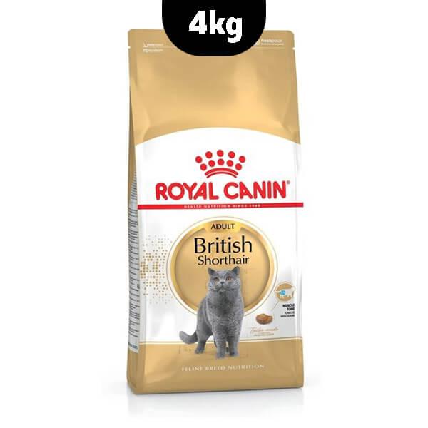 غذای خشک گربه بالغ موکوتاه بریتانیایی رویال کنین