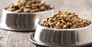 غذای خشک حیوانات خانگی