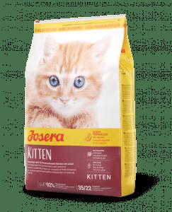 راهنمای خرید غذای خشک برای بچه گربه
